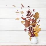 仍然秋天生活 在花瓶的下落的叶子在白色背景 免版税图库摄影