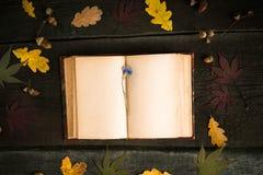 仍然秋天生活 打开书、秋叶和矢车菊在木背景 免版税图库摄影