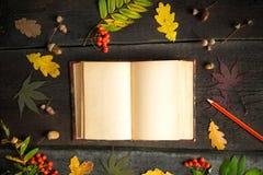 仍然秋天生活 打开有铅笔秋叶、橡子和花揪的葡萄酒笔记本在土气背景 免版税库存照片