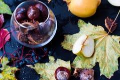 仍然秋天生活 苹果和叶子在雨中 免版税库存照片