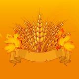 仍然背景面包谷物收获健康成份寿命 免版税图库摄影