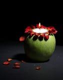 仍然苹果生活 免版税库存照片