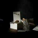 仍然1寿命 白色葡萄酒箱子,在一张木桌上的被镀金的羽毛 可能 库存照片