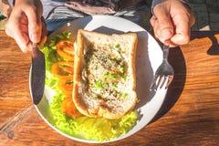 煎的面包鸡蛋 免版税库存照片