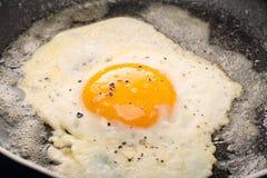 煎的鸡蛋 库存图片
