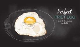 煎蛋传染媒介 图库摄影