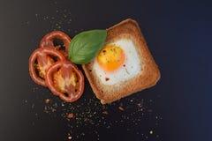 煎蛋用在多士的烤蕃茄 免版税库存图片
