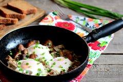 煎蛋用在老平底锅的蘑菇 黑面包片,新鲜的葱,在一张木桌上的叉子 素食容易的蛋盘 库存照片
