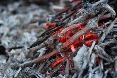 煤炭和灰在火 库存照片