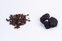 煤炭和生物量药丸-白色背景。 库存照片