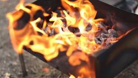 煤炭燃烧的特写镜头准备在格栅的本质上 股票录像