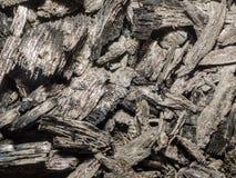 煤炭的纹理从火离开作为背景 免版税库存照片