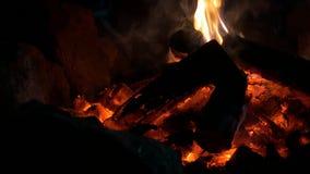 煤炭篝火火焰 股票录像