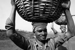 煤矿工作者 库存照片