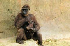 照料婴孩的母亲 免版税库存图片