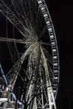 照明设备弗累斯大转轮夜底视图 大吸引力在有光秃的树的城市现出轮廓前景 乐趣概念 库存照片
