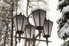 照明,冬天灯笼  免版税图库摄影