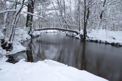 河在冬天。 免版税库存照片