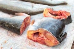 新近地切开鱼在市场上 库存照片