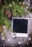 照片框架和云杉的分支 库存照片
