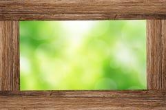 照片框架有绿色森林bokeh背景 库存图片