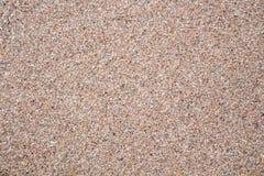 照片浮出水面潮湿沙子,背景的海 免版税库存照片