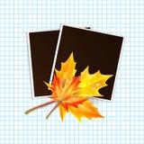 照片的框架装饰了秋天 免版税图库摄影