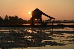 照片背后照明剪影东南亚沼泽地小屋 免版税图库摄影
