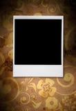 照片葡萄酒 皇族释放例证