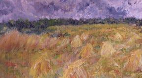 照片wheatfield 免版税库存图片