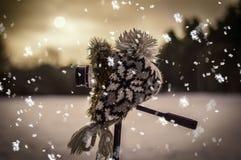 照相机和冬天风景 图库摄影