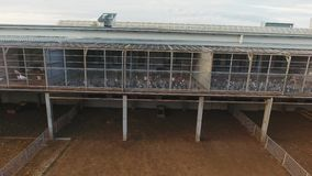 照相机显示在绵羊和羊羔的畜栏上被修建的现代鸡舍 股票视频