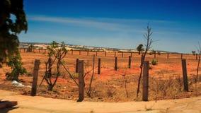 照相机沿与灌木的红色沙丘移动 影视素材