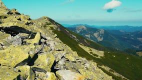 照相机采取从喀尔巴阡山脉范围峰顶的全景  股票录像