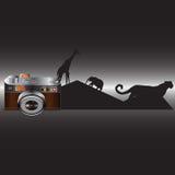 照相机,逗人喜爱的野生生物 库存照片