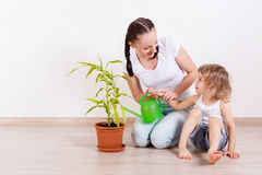 照看植物的家庭 库存图片