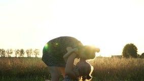 照顾与女儿的戏剧在领域在日落 缓慢的mo 股票视频