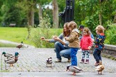 照顾和她的喂养鸭子的孩子在夏天 免版税图库摄影
