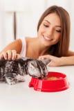 照顾她小的小猫 免版税库存图片