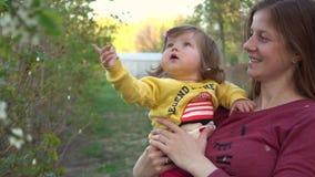 照顾展示到婴孩在树的花瓣 股票录像