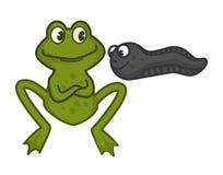 照顾池蛙和滑稽的小蝌蚪与眼睛 库存例证