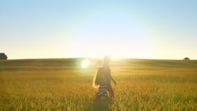 照顾走与麦子或黑麦领域的,日落美丽的景色小女儿一起在背景中 影视素材