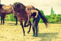 照顾马的骑师妇女 免版税库存照片