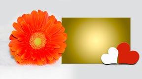 照顾` s与春天花,在白色背景的心脏的天卡片 库存图片