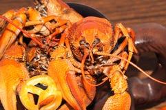 煮沸的小龙虾啤酒快餐。 库存照片