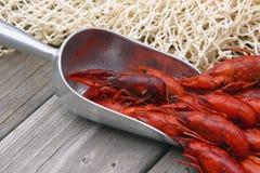 煮沸的小龙虾挖出了  免版税库存照片