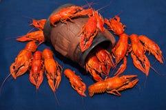 煮沸的小龙虾用啤酒 免版税图库摄影