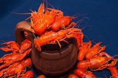 煮沸的小龙虾用啤酒 库存照片