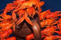 煮沸的小龙虾用啤酒 免版税库存照片