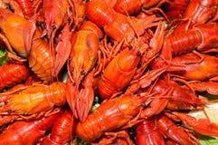 煮沸的小龙虾用啤酒 库存图片